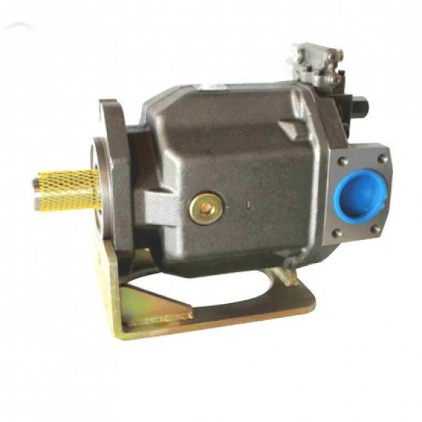PAKER YB1-100 Piston Pump #2 image